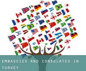 Embassies and Consulates in Turkey