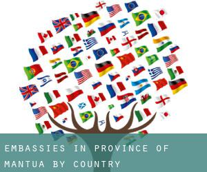 Embassies in Province of Mantua by Country